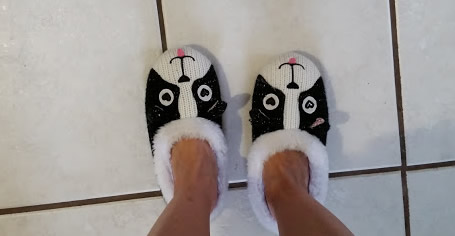 The slippers